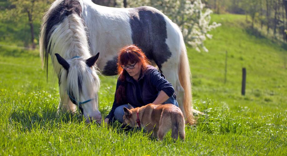 Naturheilpraxis für Tiere Petra Hüttner - Home